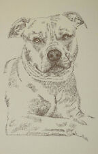 American Pit Bull Terrier Dog Art Print 235 Kline adds dogs name free into print