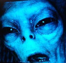 UFO HYBRID ALIEN 5 X 7 PRINT