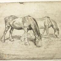 Art Deco etching horse eating grass portrait Christine McGregor signed antique