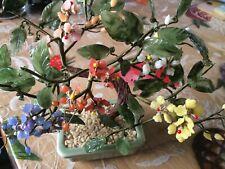 leonardo glass bonsai unboxed