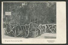 Biologische Tentoonstelling 1905  Koningszaal, het Bosch