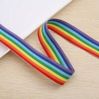 25mm Lanyard with Safety Break away and Metal clip Rainbow - Y8W4