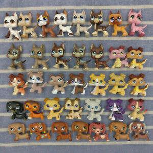 Littlest Pet Shop LPS Dachshund Collie Great Dane Dogs Cat Kids Collectible Toys