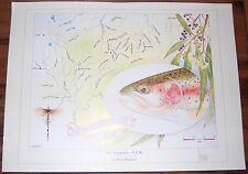 Fly Fishing Artwork - SIGNED Trevor Hawkins Print - New England, NSW