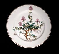 Beautiful Villeroy Boch Botanica Salad Plate