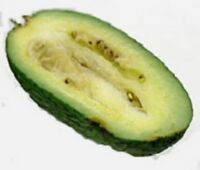 exotisches gesundes Obst von der ANANAS-GUAVE - lecker