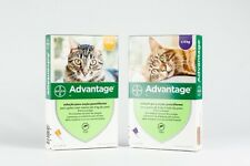 ADVANTAGE CHAT Antiparasitaire/Anti Puces  4p