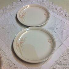 Stoneware Staffordshire Pottery Dinner Plates