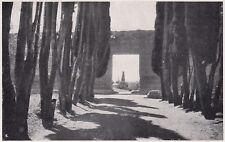 D3122 A Villa Adriana presso Tivoli - Stampa d'epoca - 1927 vintage print