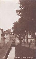 LUCCA - Una veduta dalle Mura - Foto Cartolina