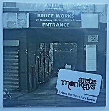 Arctic Monkeys When The Sun Goes Down Single Vinyl MINT Original 2006