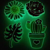 NEW Glow In The Dark For Crocs, Gemini Zodiac Symbol Shoe Charm