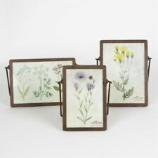 Sass & Belle Contemporary Photo & Picture Frames