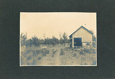 1891-1902 Davis Prune Orchard and Dryer, Beaver Creek, Oregon City, OR Photograp