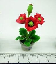 1:12th  Red Poppy In A Pot Dolls House Miniature Flower Garden Accessory