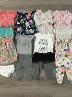 Baby Girl Clothing Lot, 14 Items, 6 Months, Carter's Outfits And Separates