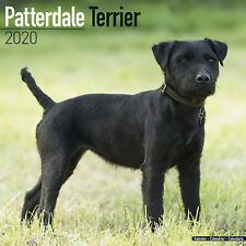 Patterdale Terrier - 2020 Wall Calendar - Brand New - 806360