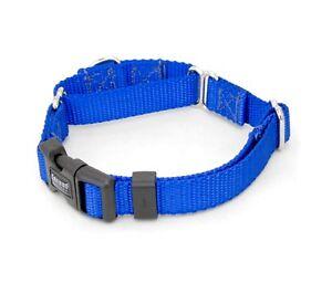 "1/2 Inch Martingale w/ Buckle Dog Collars 1/2"" Width Nylon Dog Collar"