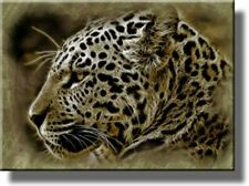 Head of Jaguar Picture on Stretched Canvas, Wall Art Décor, Ready to Hang!