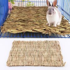 Small Animal Rabbit Rat Hamster Grass Chew Mat Breakers Toy House pad 28x21cm