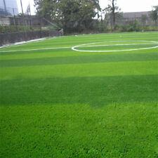 1000x Green Grass Seed Rohrschwingel Rasen Feld Turf Pflanzensamen Gartendeko