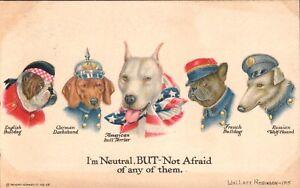 WW1 Wallace Robinson Mascots,Pit Bull,Bulldog,French Bulldog 1915 Postcard
