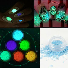 Glow In The Dark Powder Fluorescent Luminescent Noctilucent Nail Art Pigment