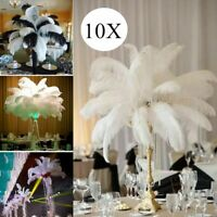 10 pcs White ostrich Feathers 12-14 inch/30-35 cm For Wedding Party DIY Decor