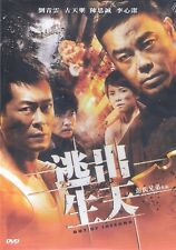 Out of Inferno DVD Louis Koo Lau Ching Wan Angelica Lee NEW R3 Eng Sub 2D Ed.
