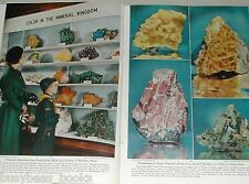 1951 magazine article Rockhounds, Rock & Mineral collecting