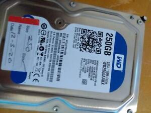 250gb harddrive + windows 10