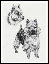 Australian Terrier Sketch Print Lovely Dog Print Poster