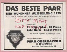 MÜNCHEN Werbung 1929, Oberbayern H Schafhausen Muster-Zucht-Blau-Fuchs-Farm Pelz