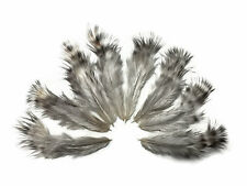 1 Dozen - Unique Grizzly Rooster Chickabou Fluff Mini Feathers