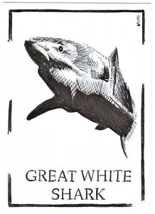 ACEO Art Sketch Card Animal Great White Shark (ink) Drawing