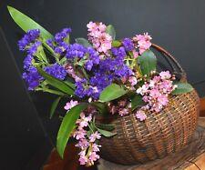 Japanese Bamboo Basket Ikebana Tea Ceremony Flower Antique Vase Flower Sumikago