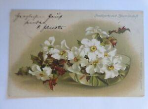 Blumen, Blüten im Wasser, Duftkarte,   1902, J.C. Schmidt ♥  (62768)