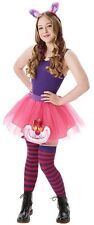 Abbigliamento e accessori rosa Disney per carnevale e teatro