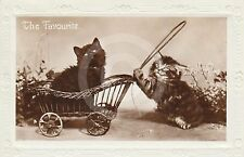 RPPC of A LONG HAIRED TABBY & A BLACK KITTEN in PRAM Postcard REAL PHOTO CAT