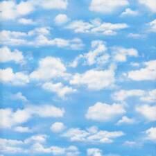 Clouds Sky Blue Landscape Medley Quilt Sew Fabric ELIZABETH'S STUDIO