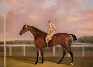 Oil painting Clifton Tomson - memnon a chestnut racehorse with jockey up canvas