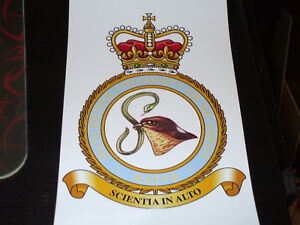 THE ROYAL AIR FORCE MANCHESTER UNIVERSITY AIR SQUADRON CREST STICKER 7X5 INCH.