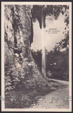 VARESE CITTÀ 173 GROTTE VALGANNA - CASCATA Cartolina 1933