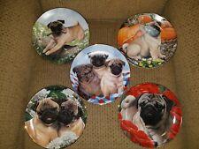 Set Of 5 Danbury Mint Pug Plates