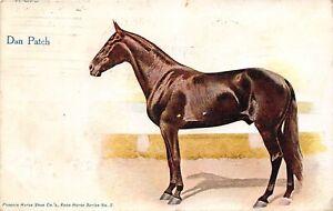 H71/ Chicago Illinois Postcard c1910 Horse Dan Patch Coffman Dublin Ohio 181
