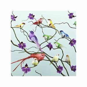 Colourful Oriental Birds Perched on Orchids Art Wall Decor Print 2 60x60cm
