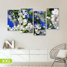 Magnolia II Quadro su tela 152x78 stampa fiori bianchi soggiorno ufficio salotto