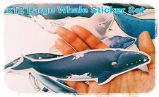 LARGE Whale Stickers,sea life Sticker,tumblr stickers/laptop stickers/decoupage