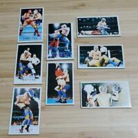 Tiger Mask Menko cards 8 piece set wrestling Showa vintage