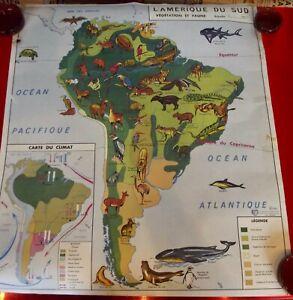 Old Map School Poster MDI Australie Océanie Amérique du sud Aras Tatou Boa Bat